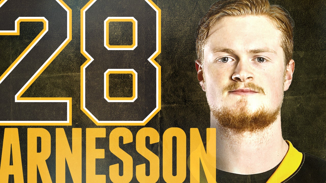 28_Arnesson.jpg