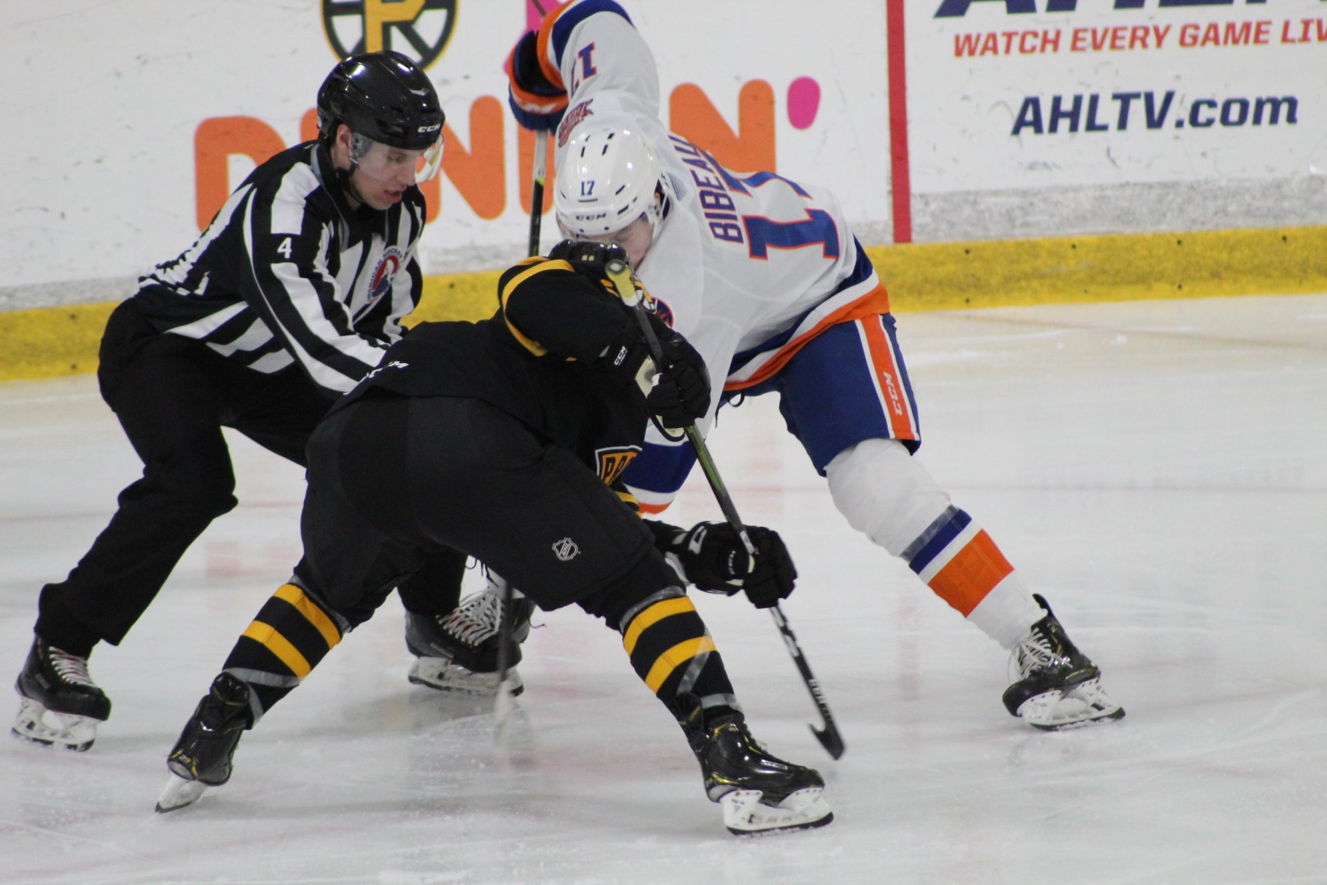 P-BRUINS FALL TO BRIDGEPORT SOUND TIGERS, 3-2