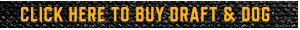 BuyButton_Arrow1_DraftDog.png