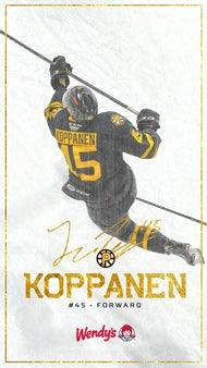 DigitalBackground_Web_1920_Koppanen.jpg
