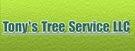 Logo_Tony's Tree Service.jpg