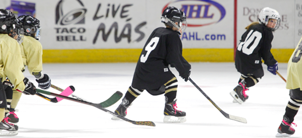 Youth Hockey Groups Providence Bruins